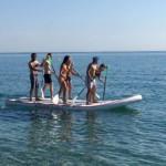 paddle-commun
